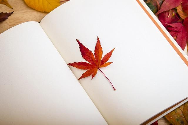本を読むのなら北へ