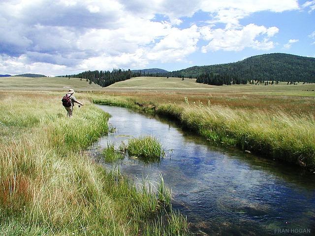 北海道と東北の渓流釣りは、まったく違う