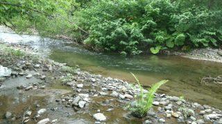 思い出を釣る川